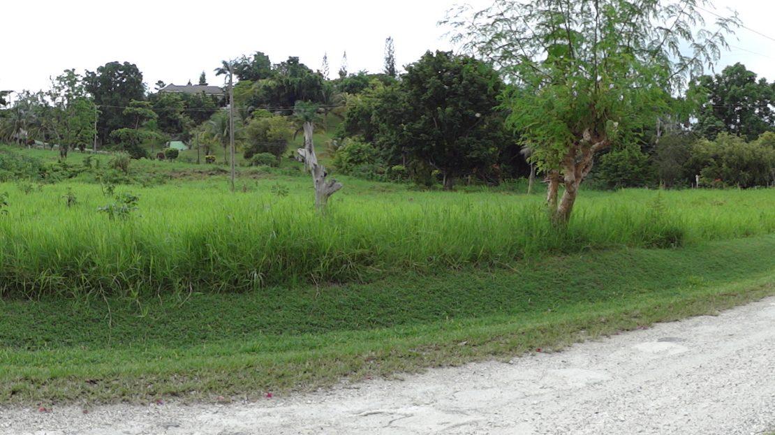 Terrenos, São José do Rio Preto, SP